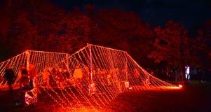 De onderdompeling is een sensorische exploratie van het rood Stock Afbeelding