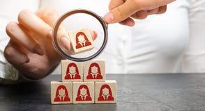 De onderneemster zet houten blokken met het beeld van vrouwelijke werknemers Beheer in een team Onderneemster en een grote groep  stock afbeeldingen