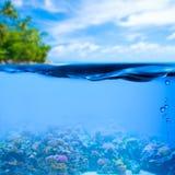 De onderwater tropische achtergrond van de zeewateroppervlakte stock foto's