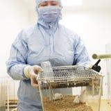 De onderzoeker van de biotechnologie stock fotografie
