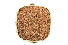De ongekookte achtergrond van ongepelde rijstkorrels Stock Afbeeldingen