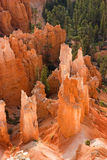 Bryce Canyon Hoodoos Royalty-vrije Stock Afbeeldingen