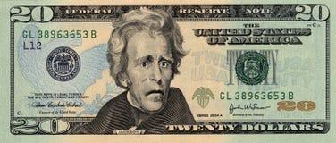 De ongerust gemaakte Rekening van Twintig Dollar Stock Afbeeldingen