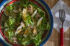 De ontbijtplaat met randen blauw wit rood vulde met salade dichte omhooggaand Royalty-vrije Stock Foto