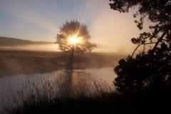 De Onthullende Glorie van de god! Stock Foto