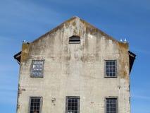 De ontmoetingsplaats van de zeemeeuwenvogels van Estern bovenop de oude bouw Stock Foto's