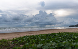 De onweersbui komt over het overzees Royalty-vrije Stock Foto's