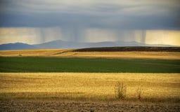 De onweersbui van het land, geel en groen gebied Stock Foto