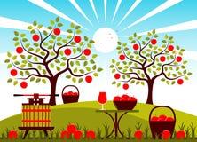 De oogst van Apple Stock Afbeelding