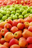 De Oogst van de appel Stock Afbeelding