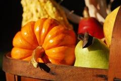 De Oogst van de herfst stock afbeeldingen