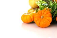 De Oogst van de herfst royalty-vrije stock afbeeldingen