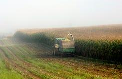 De oogst van de maïs Stock Foto's