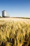 De Oogst van de prairie stock afbeelding