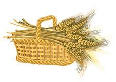 De oogst van de tarwe in mand Stock Afbeelding