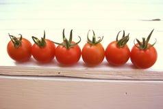 De oogst van de zomer Stock Fotografie