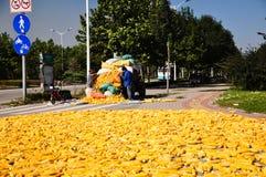 De oogst van het graan in China Stock Afbeelding