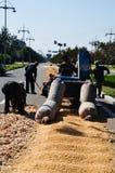 De oogst van het graan in China Royalty-vrije Stock Fotografie