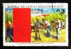 de oogst van 10 miljoen toont de mensen die aan de oogst, circa 1970 deelnemen Royalty-vrije Stock Afbeelding