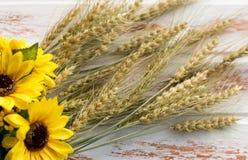 De oogst van tarwe stock fotografie