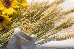 De oogst van tarwe royalty-vrije stock foto's