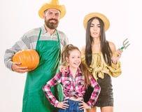 De oogst van de de tuinliedenpompoen van familielandbouwers isoleerde witte achtergrond Landbouwers van de familie de rustieke st royalty-vrije stock foto