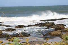 De oostelijke Wilde Kust van de Kaap Royalty-vrije Stock Foto's