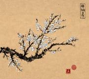 De oosterse boom van de sakurakers in bloesem op uitstekende achtergrond Traditionele oosterse inkt die sumi-e, u-zonde, gaan-hua royalty-vrije illustratie