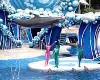 De op zee Wereld van de dolfijn Stock Afbeeldingen