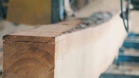 In de opbrengst houten materiële HD 1920x1080 van de houtbewerkingsindustrie stock video