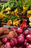 De Opbrengst van de landbouwersmarkt Stock Foto