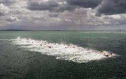 De open water zwemmende concurrenten beginnen een race over lange afstand stock foto