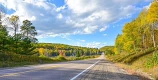 De open weg van de de zomerweg aan overal Zonnige blauwe hemel, hout aan beide kanten onderaan een weg van het land in de zomer Royalty-vrije Stock Foto's