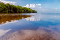 De open zee van de Caroniriviermonding door mangroven royalty-vrije stock afbeelding