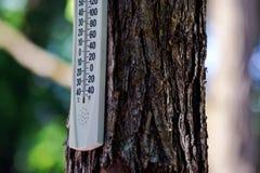 De openlucht Thermometer van de Temperatuur Stock Foto's