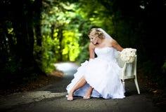 De openluchtportretten van het huwelijk stock foto's