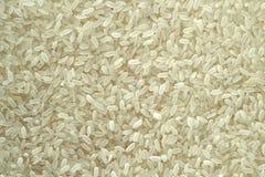 De opgepoetste rijst kan als achtergrond worden gebruikt royalty-vrije stock afbeelding