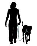 De opleiding van de hond (Gehoorzaamheid) Stock Foto's