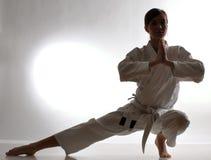 De opleiding van de karate stock afbeelding