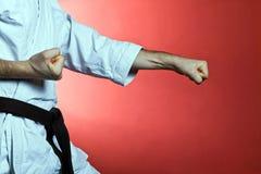 De opleiding van de karate, oefening bij gymnastiek royalty-vrije stock foto's