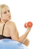 De opleiding van de vrouw met dunbells Stock Fotografie