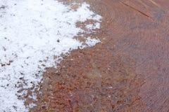 De oppervlakte van de besnoeiingsboom met smeltende sneeuw Royalty-vrije Stock Foto's