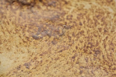 De oppervlakte van de koffie Royalty-vrije Stock Afbeelding