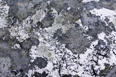 De oppervlakte van de steen Royalty-vrije Stock Foto
