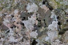 De oppervlakte van de steen Royalty-vrije Stock Fotografie