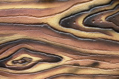 De oppervlakte van donkere boom Stock Foto's