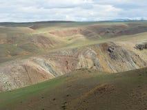 De oppervlakte van steppe in verschillende schaduwen op aardbackgrou Stock Foto