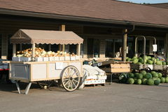 De Opslag van Amish Royalty-vrije Stock Foto's