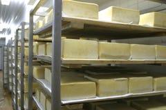 De opslag van de kaas in zuivelfabriek Stock Afbeelding