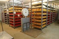 De opslag van de kaas in zuivelfabriek Stock Foto's
